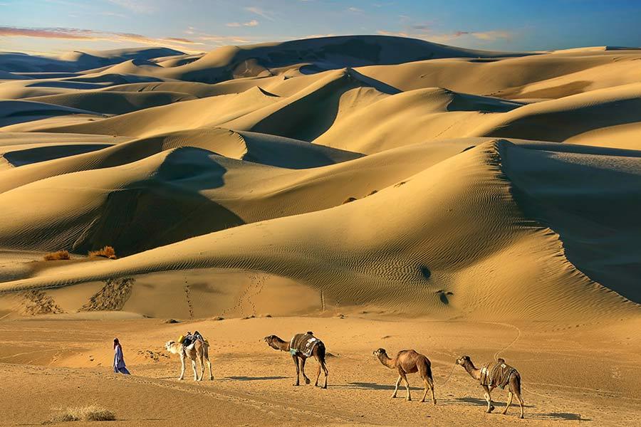 Cholistan Desert Pakistan