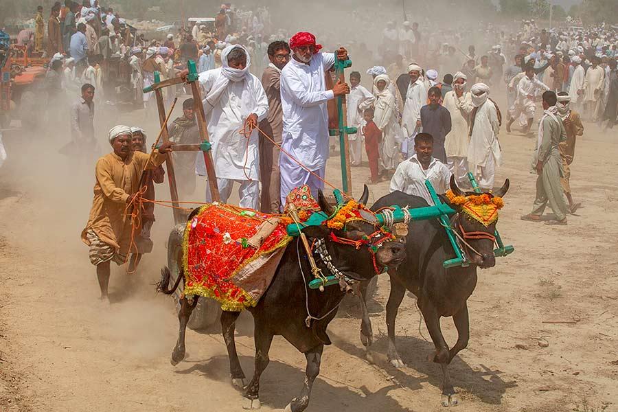 Festival Pakistan